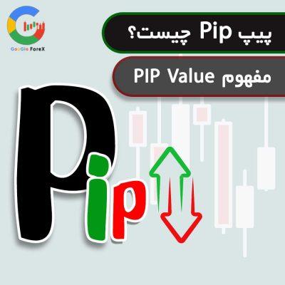 مفهوم PIP Value   پیپ ولیو   پیپ pip چیست  پیپت PIPET